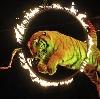 Цирки в Рязани